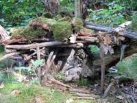 Domeček lesních skřítků